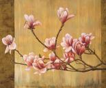 Pink Magnolias