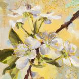 Floraison jaune I
