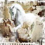 White horse I