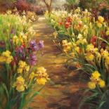Iris Pathway